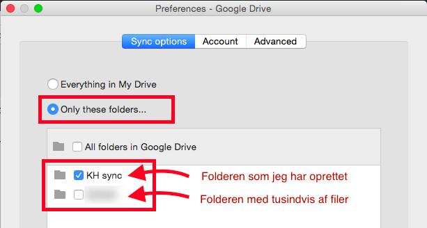 Sync indstillinger for Google Drive